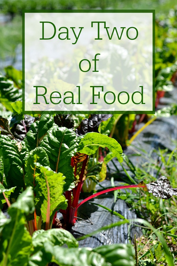 Day Two of Real Food is full of healthy recipes. Eating a clean, real food diet makes my family feel so much better.