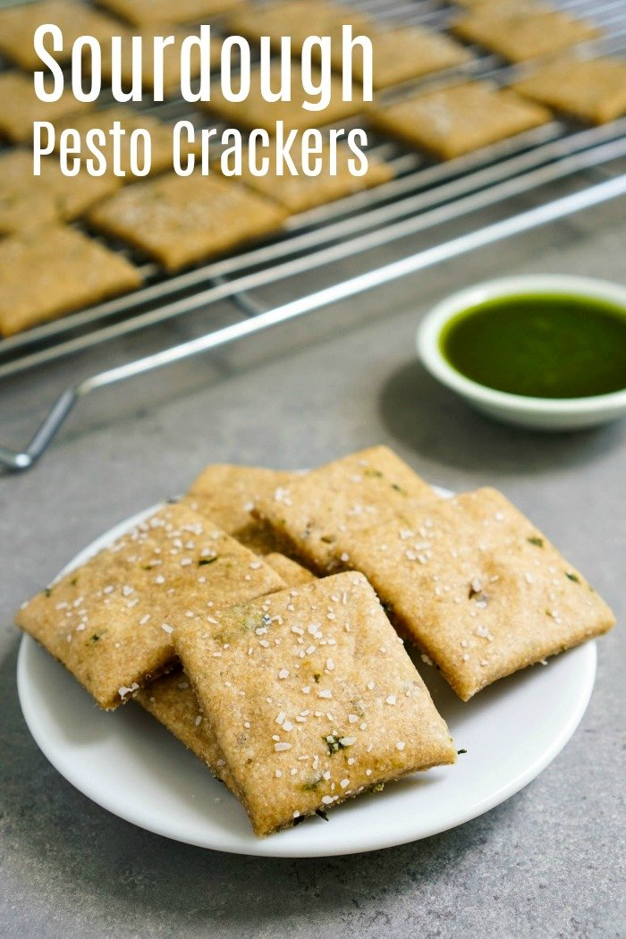 This easy pesto sourdough crackers recipe makes such a healthy, delicious snack. Try this recipe when you have extra sourdough starter that needs a home.