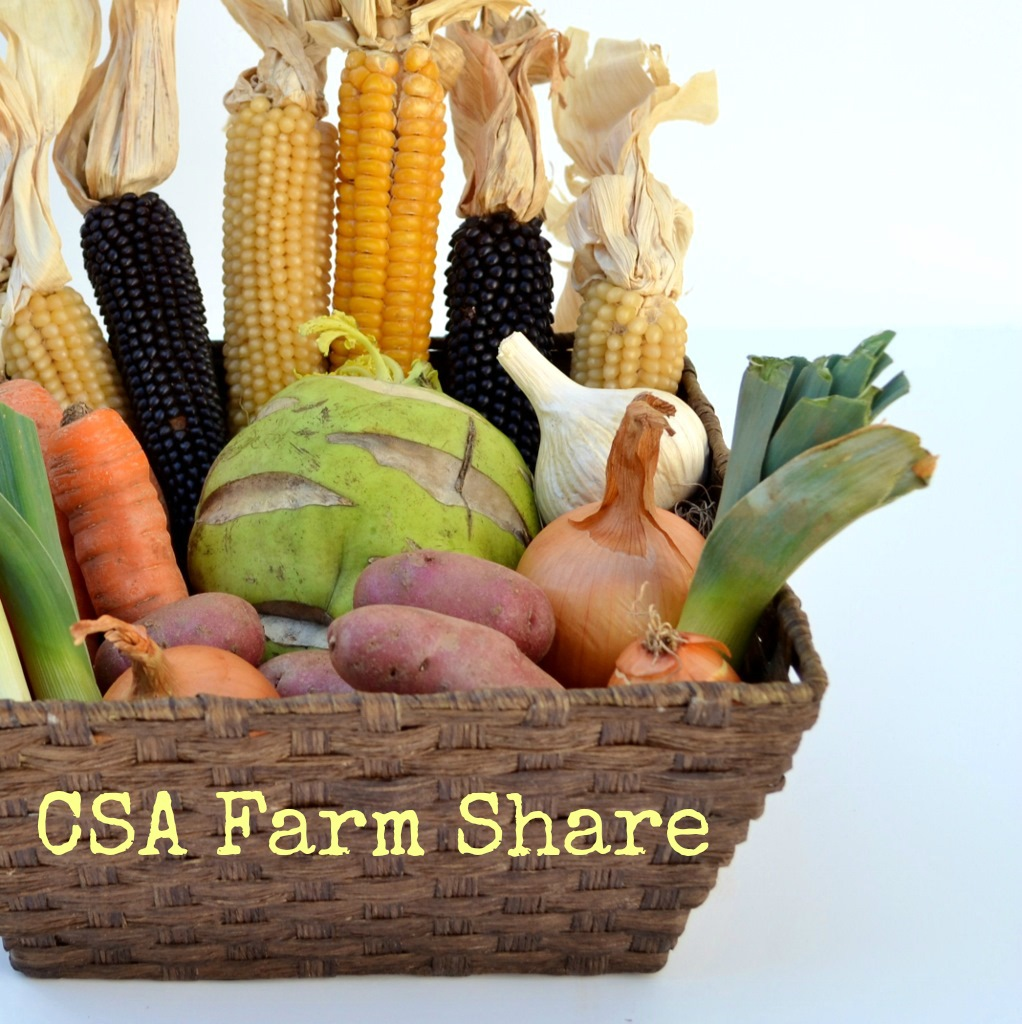 Ten Reasons Why I Love My Farm Share | Real Food. Real Deals.
