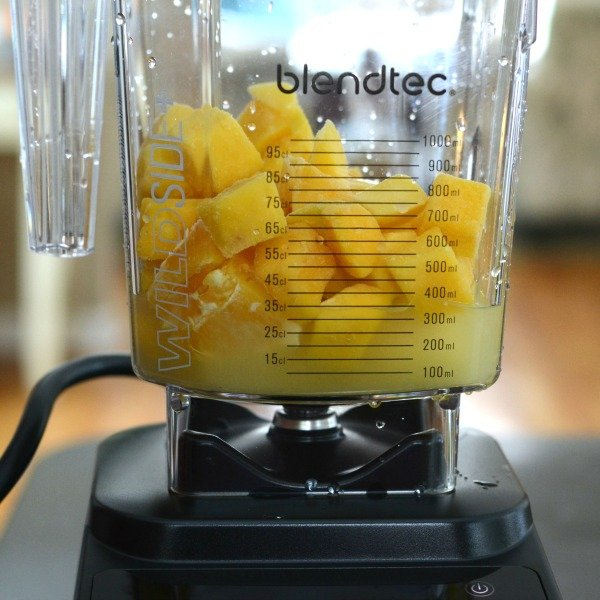 Blendtec blender review. You won't believe how powerful this machine is!