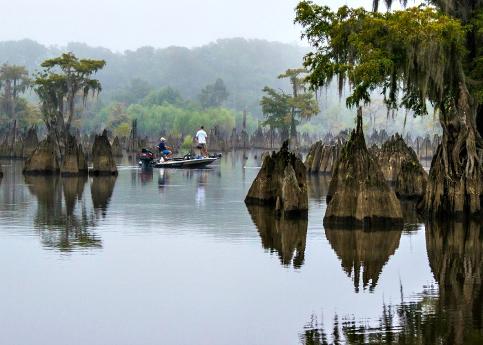 Fishing in Gulf County, Florida